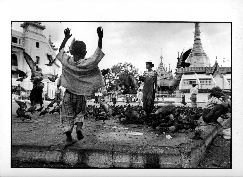 Duer, Burma 1998, (30) 40x50cm og 50x60cm Gelatine Silver Print