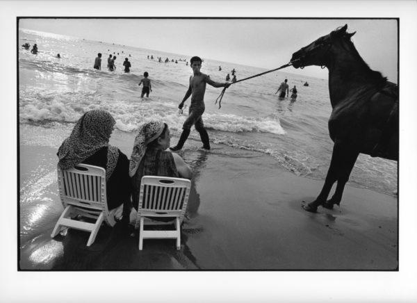 Hest på badestrand, Algerie 2007, (15) (B) 40x50cm Gelatine Silver Print