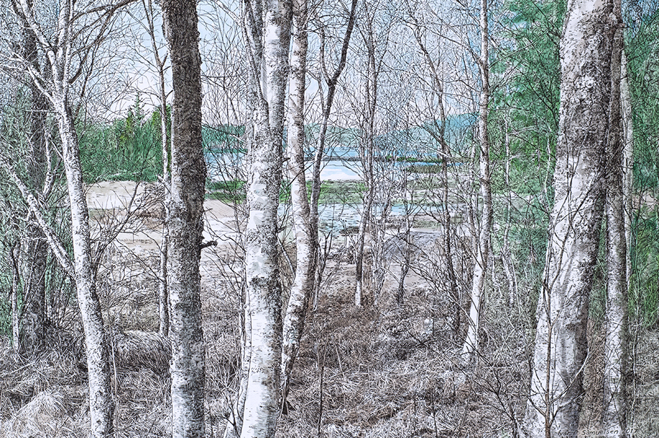 Ivar Samuelsen, Skogsfragment 82
